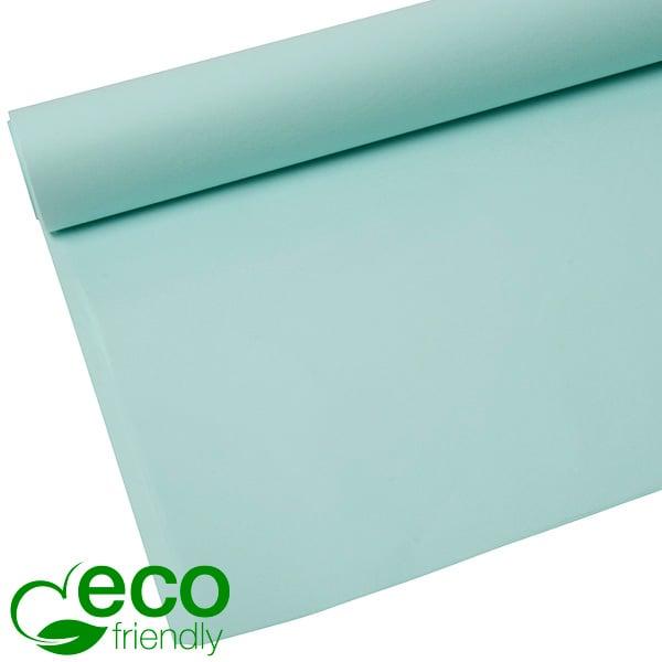 Milieuvriendelijk Zijdevloeipapier, 480 vellen Aqua 700 x 500 17 gsm