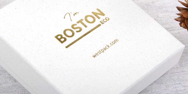 Boston & Frankfurt ECO