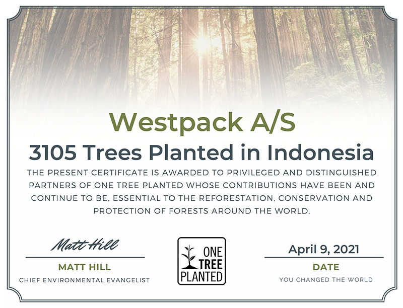 We just donated 3,105 trees to a national park in Indonesia – thanks to our customers